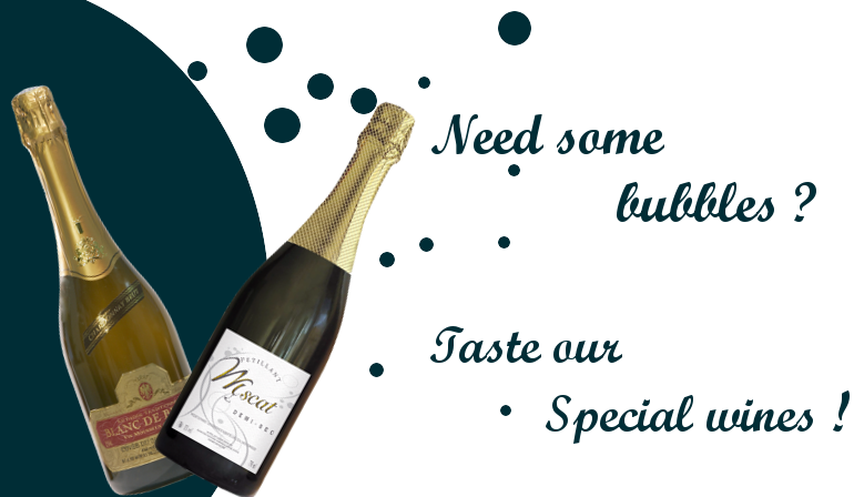 Need some bubbles, taste our special wines