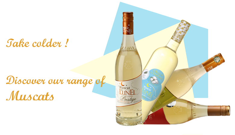 Take colder, discover our range of Muscat
